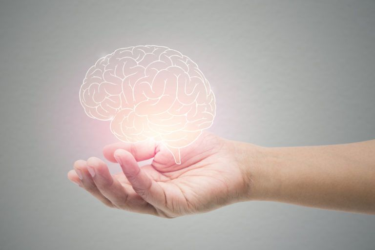 holographic brain in hand