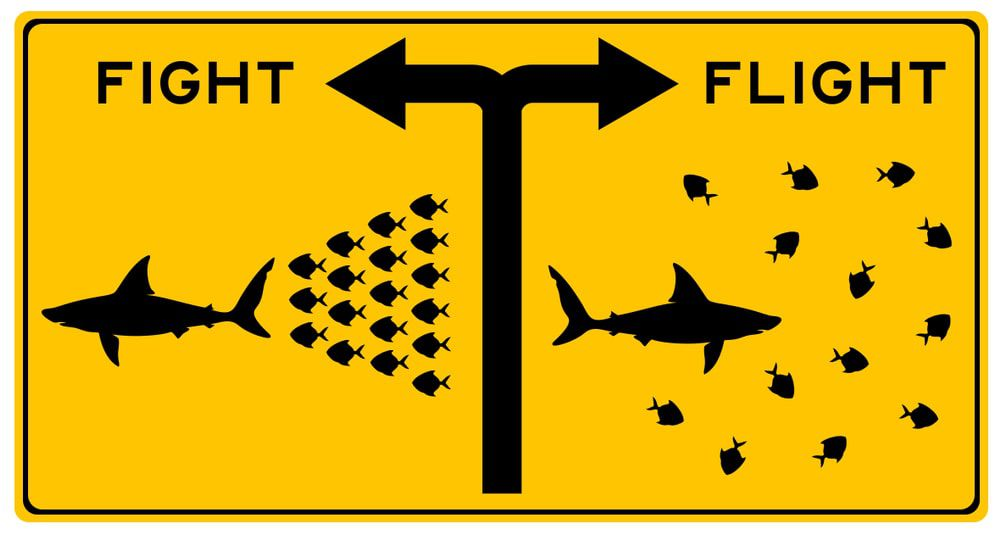 Yellow street sign depicting both the fight and flight fear responses using sharks and fish